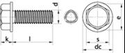 Vite autoformante (trilobata) Testa Esagonale con Bordino Zincato Bianco